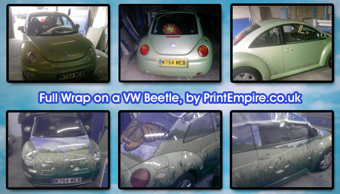 vehicle wrapping beetle